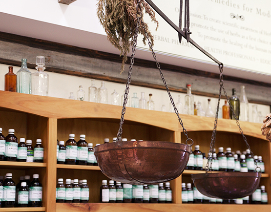 TheApothecary_3