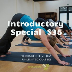 Grassroots Yoga Intro Special